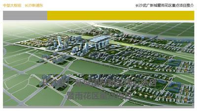 长沙武广新城国际新区核心项目暨雨花区重点项目PPT